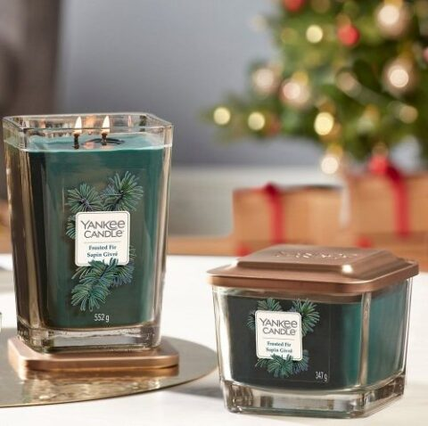 frosted fir ambiente